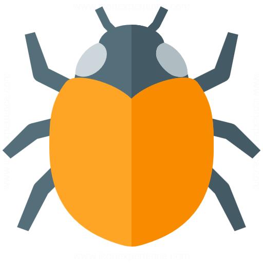 Bugs Report